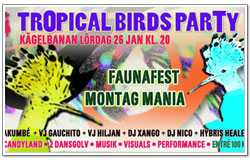 Tropical Birds party, filmflyer, Helene Berg